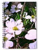 Dogwood Blossoms Pair Up Spiral Notebook