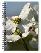 Dogwood Chorus Spiral Notebook
