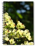 Dogwood Flowers White Dogwood Tree Flowers Art Prints Cards Baslee Troutman Spiral Notebook