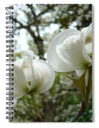 Dogwood Flowers White Dogwood Trees Blossoming 8 Art Prints Baslee Troutman Spiral Notebook