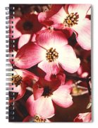 Dogwood Harmony Spiral Notebook