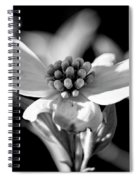 Dogwood In Black And White Spiral Notebook
