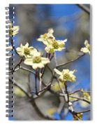 Dogwood In Bloom Spiral Notebook