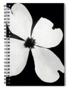 Dogwood In Days Now Past Spiral Notebook