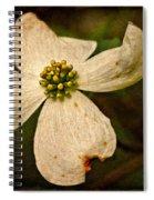 Dogwood Spiral Notebook