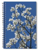 Dogwood Tree In Spring Spiral Notebook