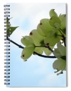 Dogwoods Facing The Sky Spiral Notebook