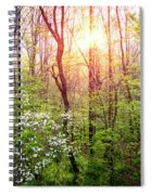 Dogwoods In The Forest Spiral Notebook