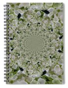 Doily Of Flowers Spiral Notebook