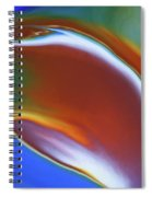 Dolphin Dive Spiral Notebook