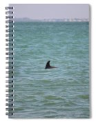 Dolphin Makes An Appearance Spiral Notebook