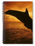 Dolphins And Sunset Spiral Notebook