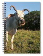 Domestic Animal 02 Spiral Notebook