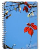 Domination Spiral Notebook