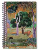 Dominican Landscape Spiral Notebook