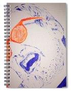 Donald Fagen Spiral Notebook