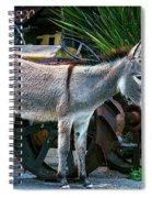 Donkey And Old Tractor Spiral Notebook