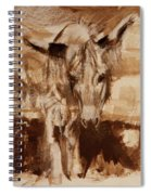 Donkey Daze Spiral Notebook