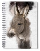 Donkey Foal No 02 Spiral Notebook