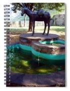 Donkey Fountain Spiral Notebook
