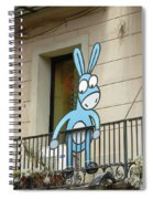 Donkey In The Placa Spiral Notebook