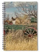 Donkeys Spiral Notebook