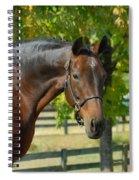 Donna Gina Spiral Notebook