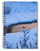 Donnelly Creek In Winter Spiral Notebook
