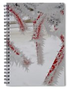 Don't Break My Heart-unique And Rare Formation Of Spiked Snow Icicles  Spiral Notebook