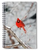 Don't Chirp With Your Mouth Full Spiral Notebook
