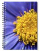 Dont Sneeze Spiral Notebook