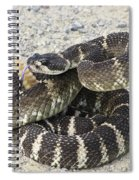 Don't Step On Me Spiral Notebook