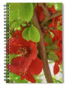 Don't Waste This Moment Spiral Notebook