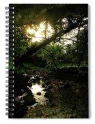 Doonally Co. Sligo Ireland. Spiral Notebook