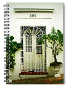 Door 59 Spiral Notebook
