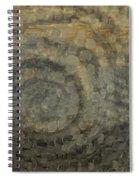 Doppler Effect Spiral Notebook