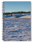 Dormant Spiral Notebook