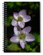 Dots Of Beauty Spiral Notebook