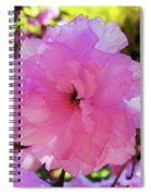 Double Bloom Spiral Notebook