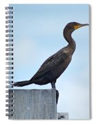 Double-crested Cormorant Spiral Notebook