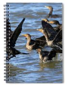 Double Crested Cormorants Spiral Notebook
