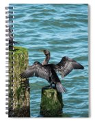 Double-crested Cormorants Spiral Notebook