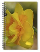 Double Daffodil Spiral Notebook