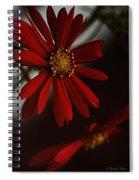 Double Gerbera Spiral Notebook