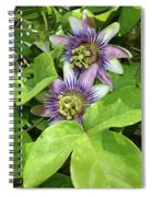 Double Passion Flowers Spiral Notebook