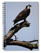 Double Perches Spiral Notebook