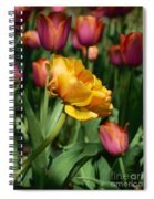 Double Petal Yellow Tulip Spiral Notebook