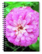 Double Pink Zinnia Spiral Notebook