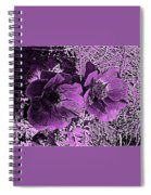 Double Poppies In Purple Spiral Notebook