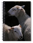 Double Portrait Spiral Notebook
